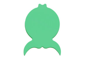 zielona, piankowa ryba zdjęcie katalogowe